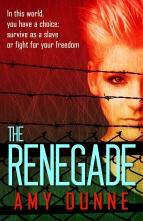 renegade1 copy
