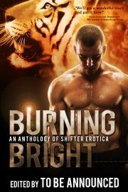 BurningBright copy
