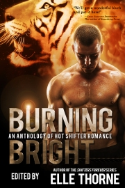 BurningBright copy