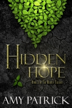 hidden3 copy