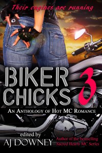 bikerchicks3-copy